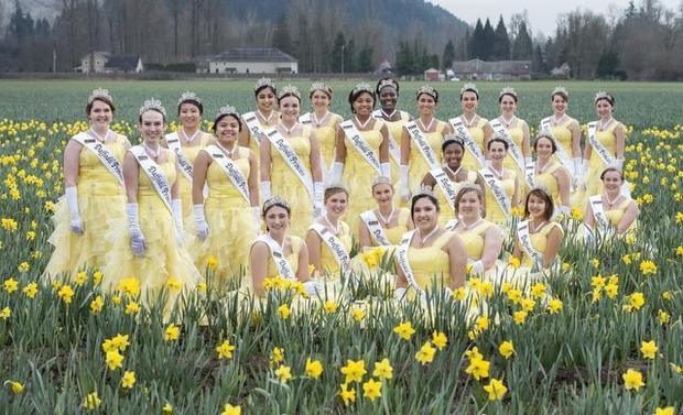 Photo of Daffodil Princesses