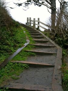 wooden steps up