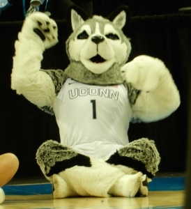 UConn Husky