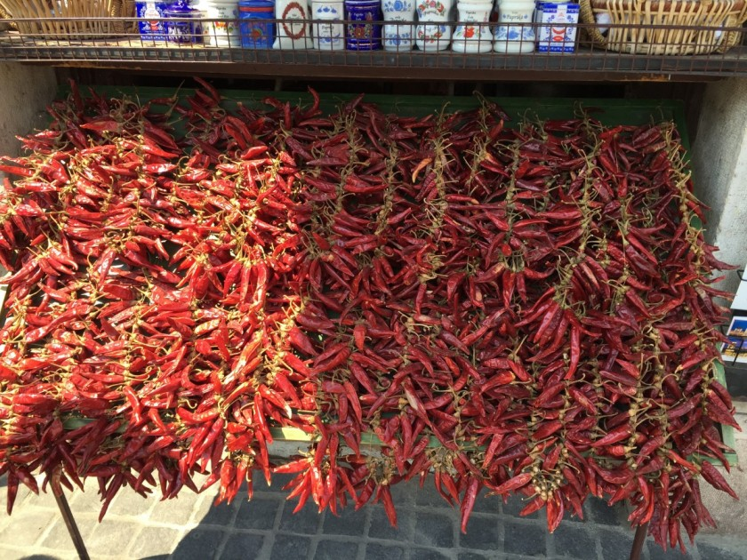 Peppers used to make paprika