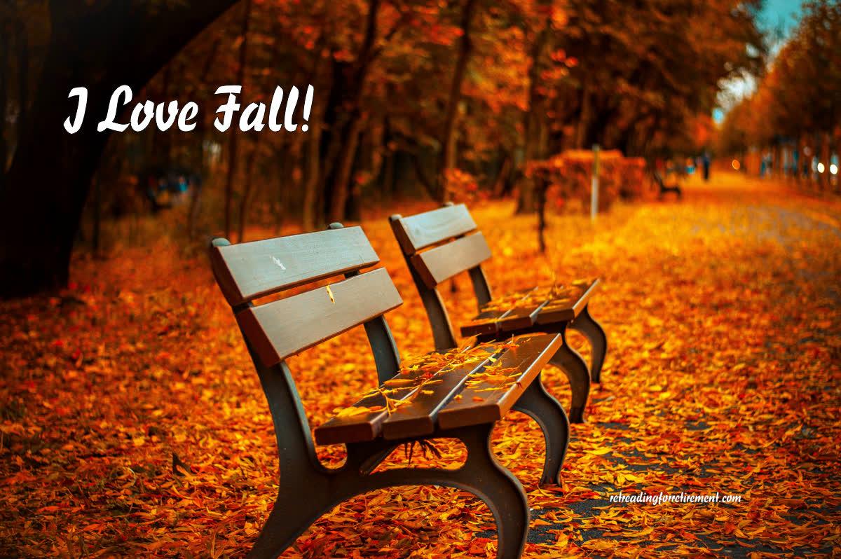 Autumn leaves: I love fall!