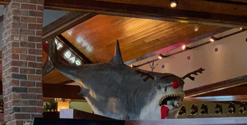 Rudolph the Shark