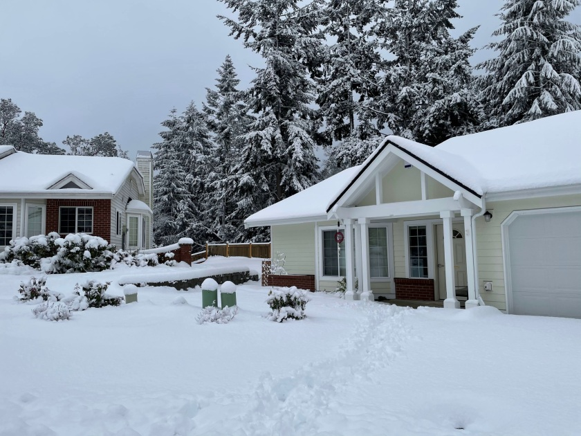 deep snow on lawn, houses, and trees
